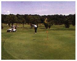 C-Way Golfer